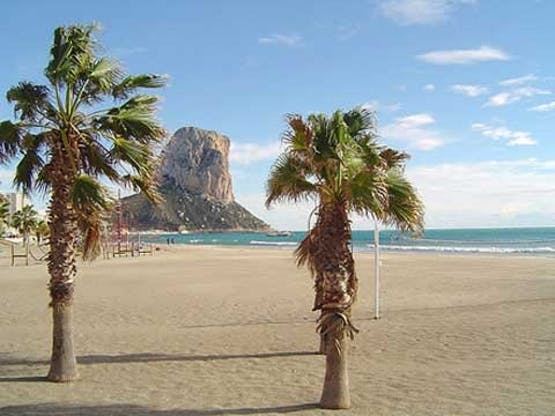 Enforex - Alicante