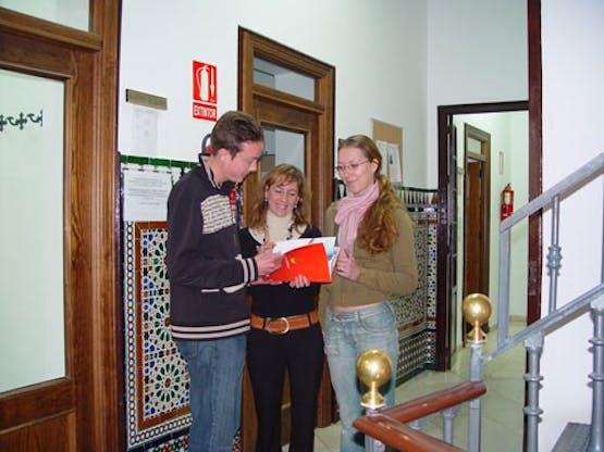 Enforex - Sevilla