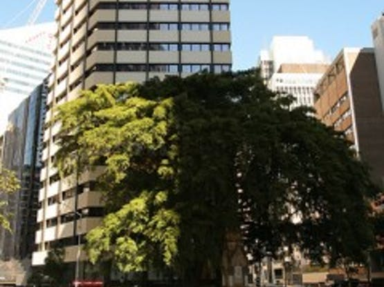 Kaplan Aspect - Brisbane