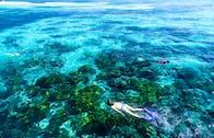 Inglês + Mergulho em Cairns