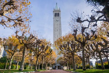 International Business Development, UC Berkeley