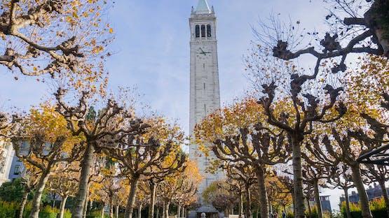 International Business Development, UC Berkeley