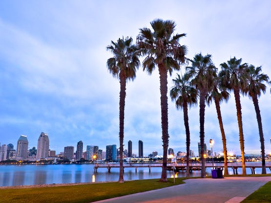 <strong>Intercâmbio Teen® em San Diego</strong><br>Janeiro/2020