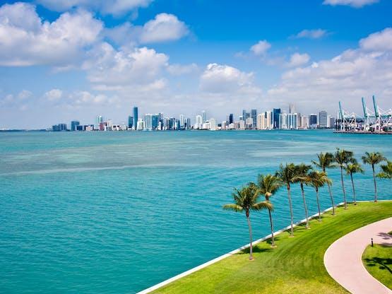 <strong>Inglês em Miami</strong>