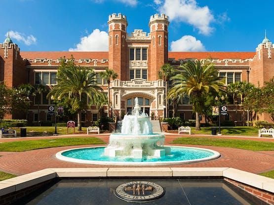 <strong>Universidade no Exterior</strong>