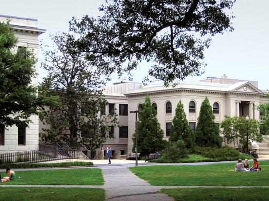 <strong> American University </strong>