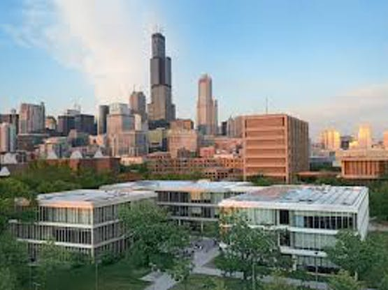 <strong>University of Illinois at Chicago </strong>