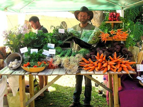 Organic African Farm
