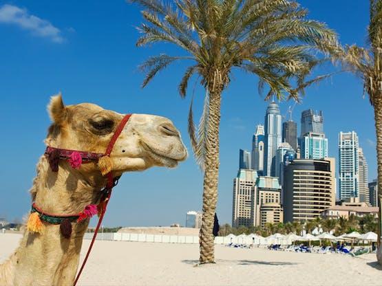 Verão é Dubai