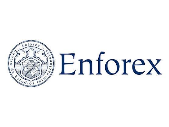 Enforex logo