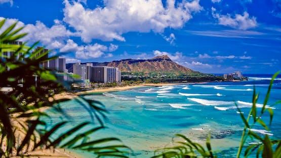 Inglês + Surfe em Honolulu