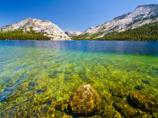 Lago Tenay, Yosemite National Park