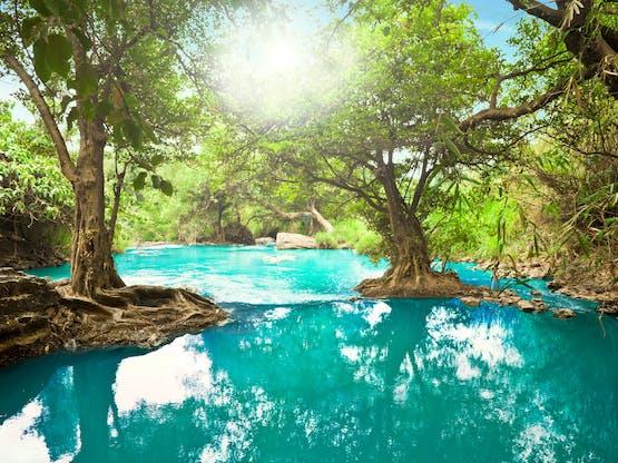 Rio cristalino em floresta tropical na cidade de Dalat, Vietnã