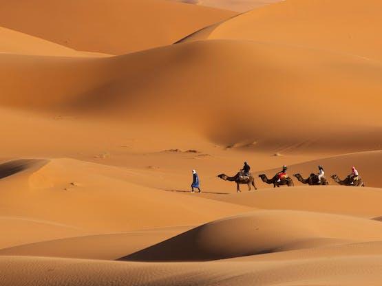 Passeio de camelo no Deserto do Saara, Marrocos