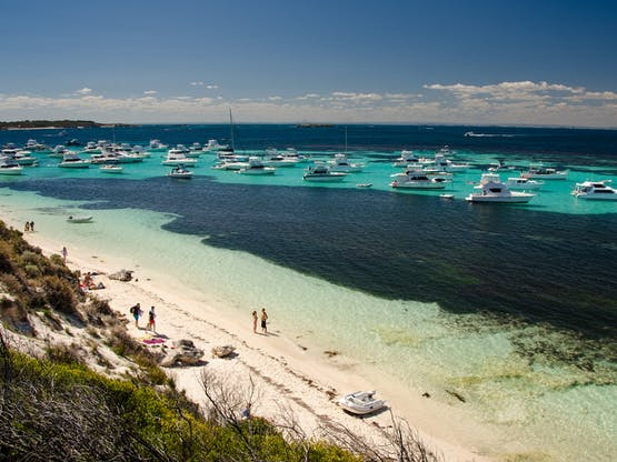 Ilha Rottnest. Perth, Austrália