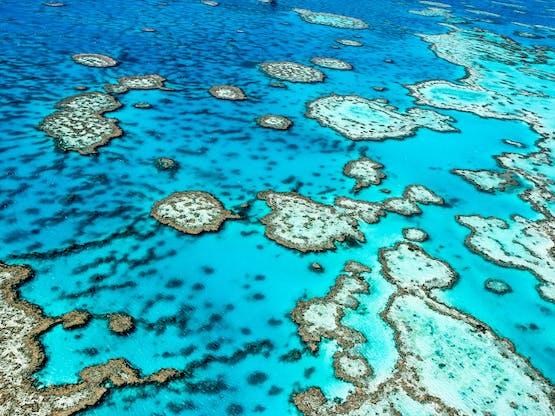 A Grande Barreira de Coral em Queensland, Austrália
