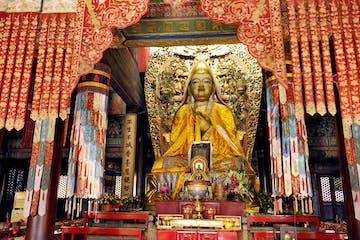 Pequim :: Beijing Panda House, Lama Temple, Confucius Temple
