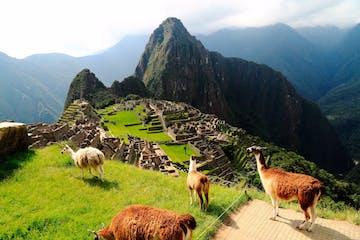 Espanhol em Cusco